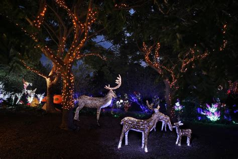 mission valley christmas lights valley christmas lights decoratingspecial com