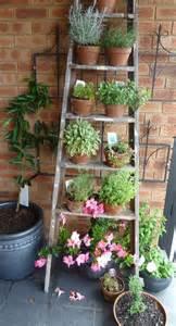 outdoor garden decorations made of wooden ladders 25 best ideas about garden ladder on pinterest vertical