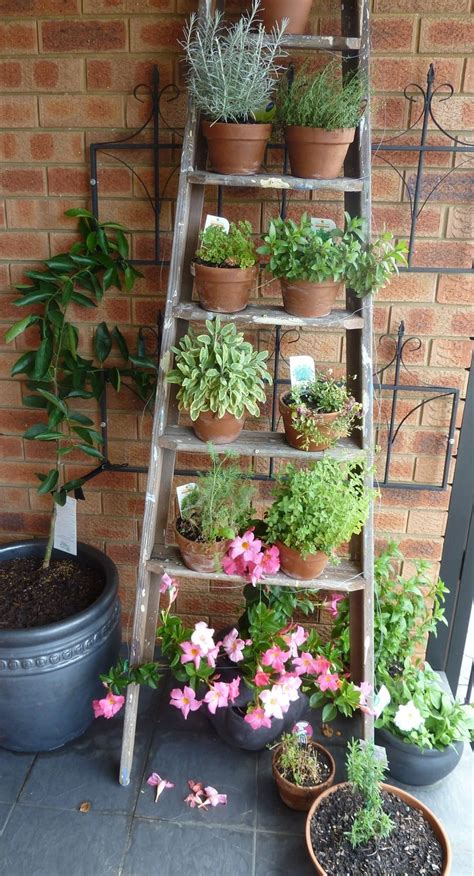 garden wall decor ideas 25 best ideas about garden ladder on vertical