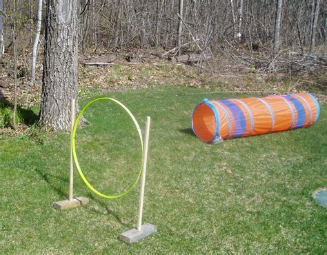 diy agility course 1000 images about stuff on agility leash and diy