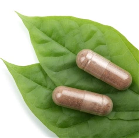 menopause the basics always new the scoop on black cohosh for menopause symptoms always