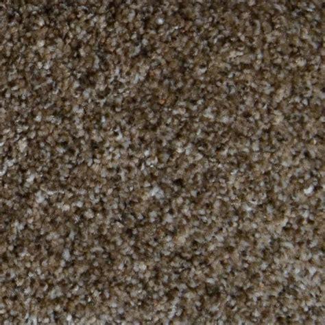Home Decorators Carpet by Home Decorators Collection Carpet Sle Appalachi Ii S