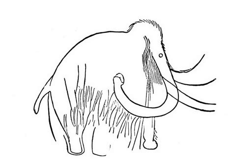 cave art coloring page cave art mammoth coloring online super 439849 coloring