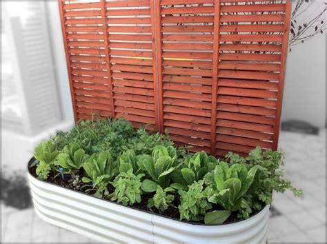 Decorative Garden Screens Perth by Garden Screens Fremantle Eclectic Landscape Perth