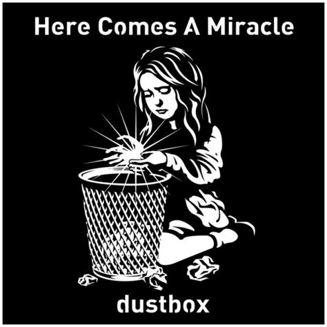 dustbox here comes a miracle dustbox here comes a miracle sumally サマリー