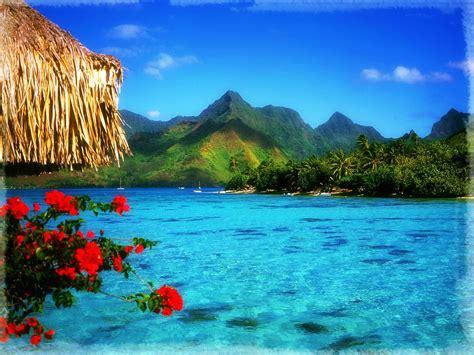 imagenes de paisajes naturales impresionantes impresionantes paisajes naturales del mar banco de