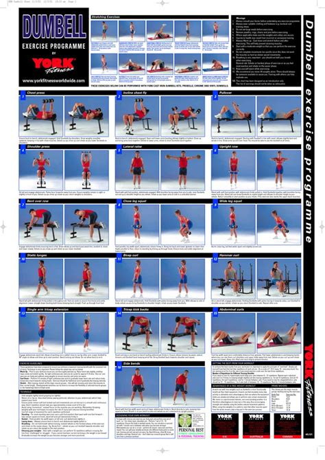 10 best images of free printable workout charts exercises 17 best images about fitness on pinterest muscle