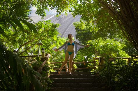 Kitchen Free Standing Islands tropical islands a rainforest near berlin