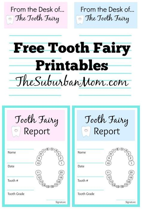 tooth receipt template free tooth ideas and free printables tooth letter
