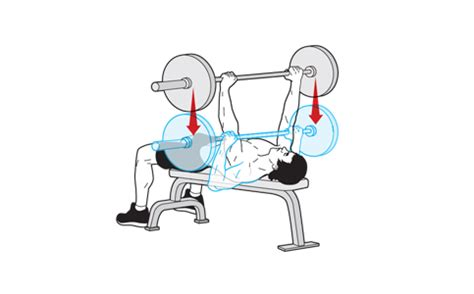 flat bench form a guide to perfect barbell bench press technique for