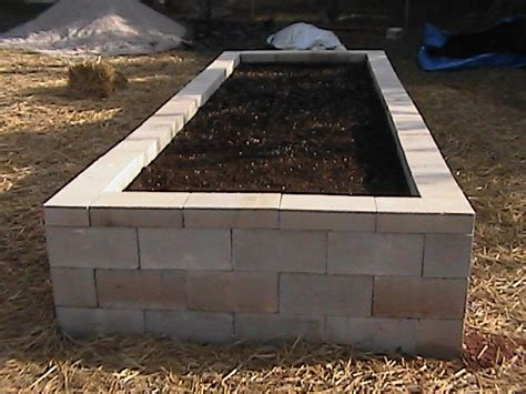 cinder block garden bed cinder block raised bed david s projects pinterest