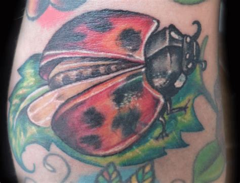 ryan tattoo artist of the week boltoon