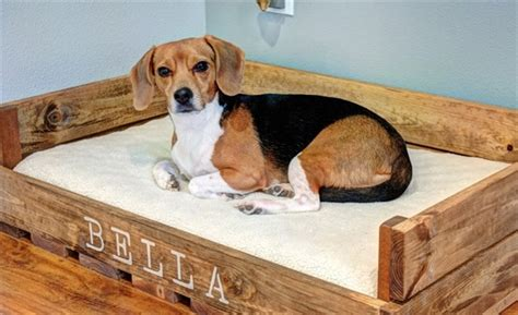 pallet dog bed plans pallet dog bed fun filled use of pallet woods wooden