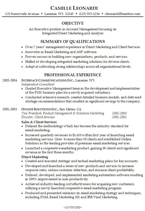 Exles Of Professional Resumes by It Resume Summary Exles 28 Images Summary Ideas For