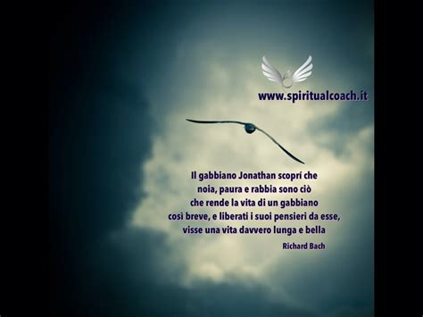 gabbiano jonathan livingston frasi jonathan livingston professione spiritualcoach