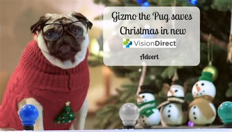pug advert 2016 gizmo the pug saves in new vision direct advert a moment with franca