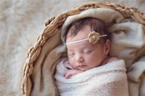 newborn photography tips   perfect shoot coles