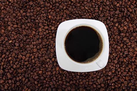 Cinta Kopi orang indonesia cinta kafe belum cinta kopi republika