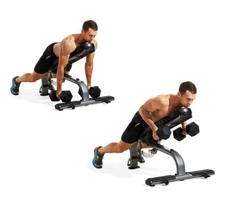dumbbell exercises on bench image gallery incline db row