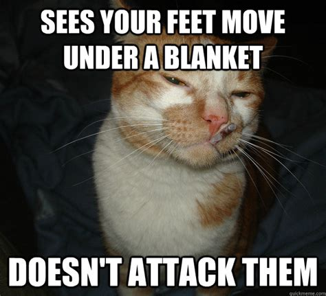 Cool Cat Meme - best of the cool cat craig meme 20 pics pleated jeans