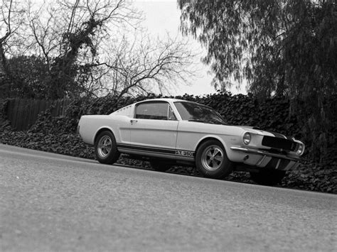 ford shelby gt350 mustang 1964 car photo 17 of 34