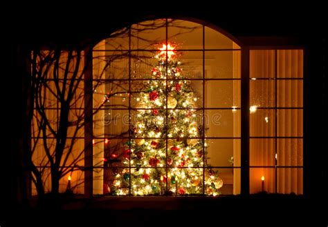 welcome home christmas tree in window royalty free stock
