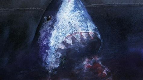 evidence of a 50 ton megalodon shark week discovery digital today animal natural