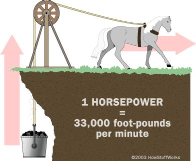 the derivation of horsepower equine ink