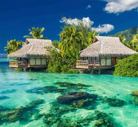 bungalow overwater in fiji islands yfgt fijian luxury vacation on malolo island overwater