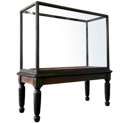 museum cabinets for sale 20th century monumental glazed museum display cabinet for