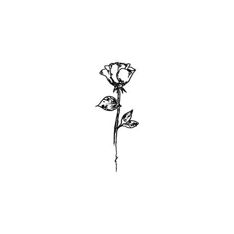 rose tattoo drawing tumblr demetrius harmon chest tattoos