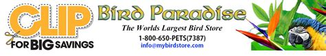 bird paradise coupons bird paradise exotic bird supplies