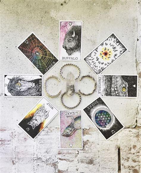 the wild unknown animal 42 best tarot oracle the wild unknown animal spirit images on tarot spreads tarot