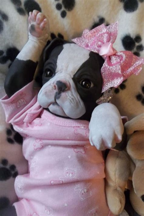 puppy that looks real puppys dolls and princesses on