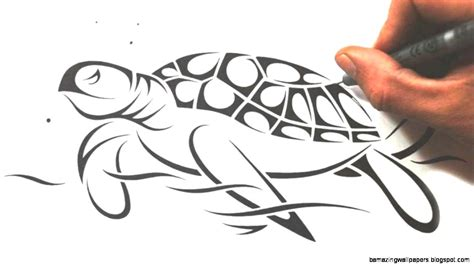 how to draw a tribal tattoo design tribal sea turtle drawing amazing wallpapers