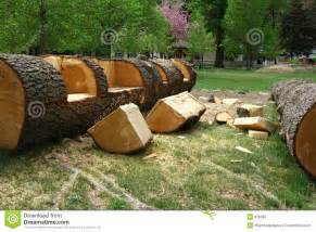 Wood Rocking Chair Plans Free by 14 Best Images About Log Benches On Pinterest Trees Fire Pits And Outdoor Benches