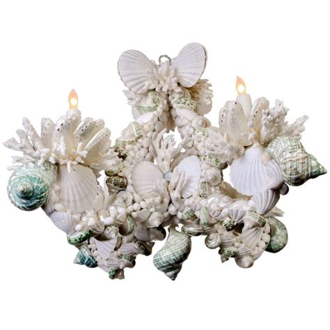 Shell Chandeliers For Sale Shell Chandelier For Sale At 1stdibs