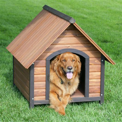 House Dogs | step by step instruction on how to build a dog house