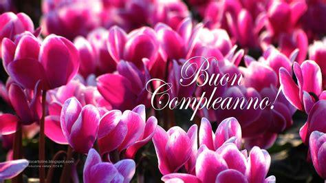 mazzi fiori compleanno auguri di buon compleanno fiori konkour in 93 eccellente
