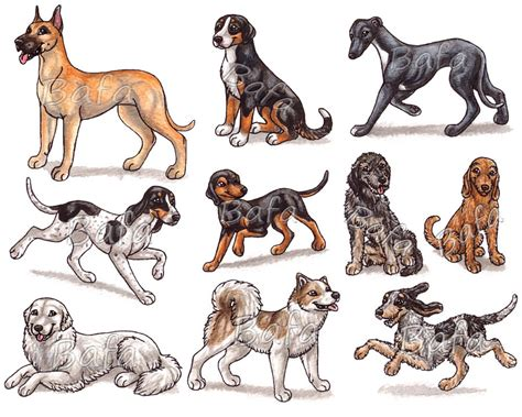 all breeds with pictures pictures of all breeds hd g breeds page by bafa on deviantart animal