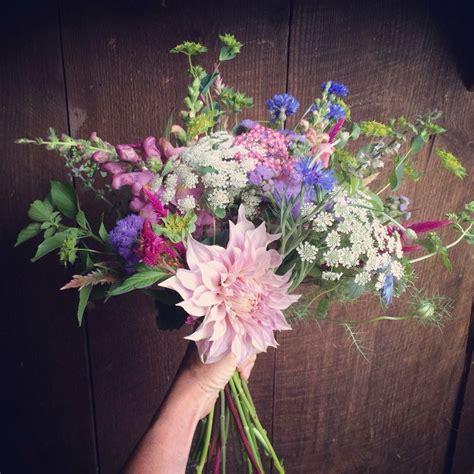 18 best September flowers images on Pinterest