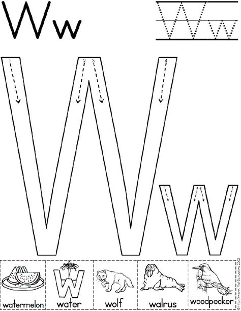 alphabet letter w template for kids letter activities alphabet letter w worksheet standard block font
