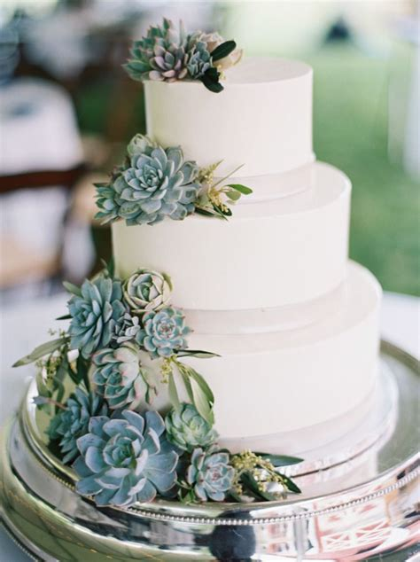Wedding Cake With Succulents by 5013 Best Wedding Cakes Images On
