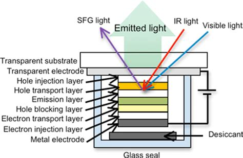 what is an organic light emitting diode evaluating molecules within a sealed organic light emitting diode device
