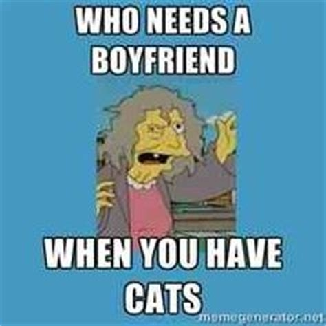 Crazy Cat Lady Meme - so sad on pinterest crazy cat lady other woman and