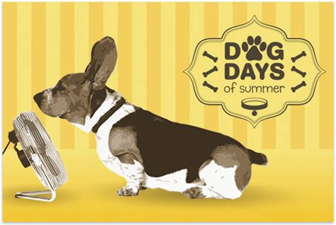dogs days are days of summer chabot space science center east