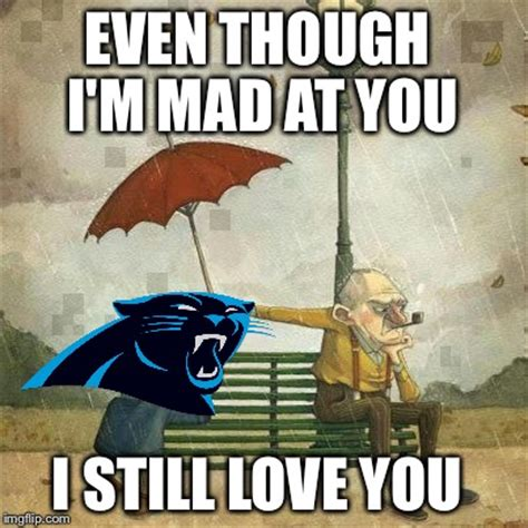 Im Mad At You Meme - image tagged in carolina panthers imgflip
