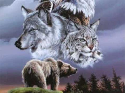 Inidia Cat 44 american indian spirits