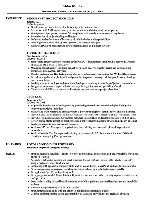 resume templates for technical lead enterprise risk management resume yang simple