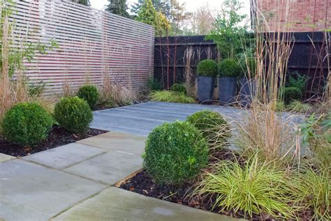 contemporary garden design ideas uk evergreen planting scheme cox garden designs
